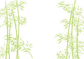 It is an illustration of bamboo.