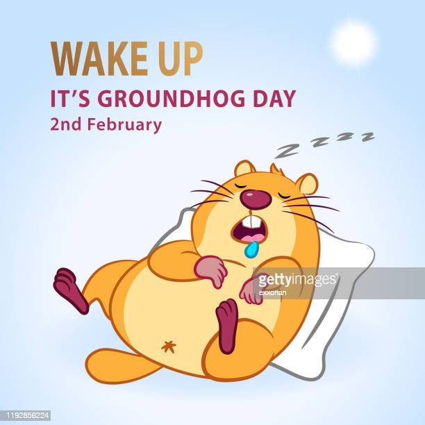 it's groundhog day - groundhog day stock illustrations