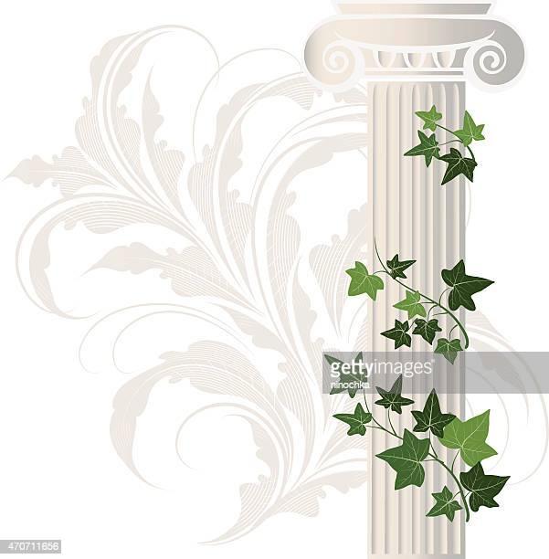 ilustraciones, imágenes clip art, dibujos animados e iconos de stock de ivy collumn - enredadera