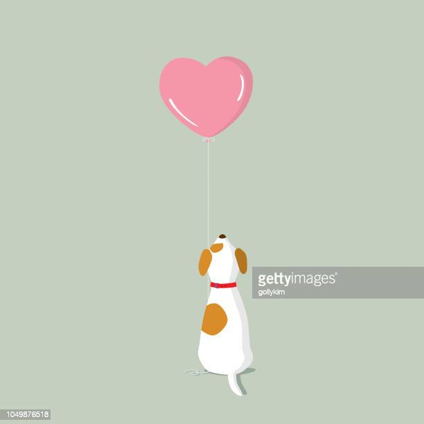 jack russell terrier puppy with pink heart shape helium balloon - cute stock illustrations