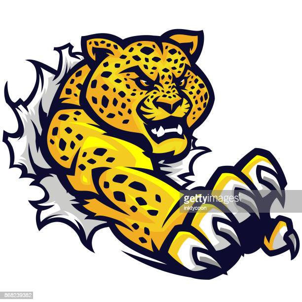 jaguar tear sport kit - fighting stance stock illustrations, clip art, cartoons, & icons