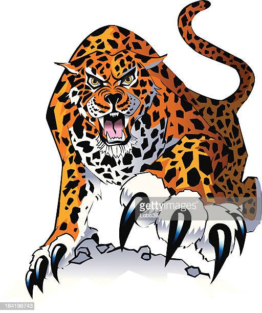 Jaguar stock illustrations and cartoons getty images - Jaguar dessin ...