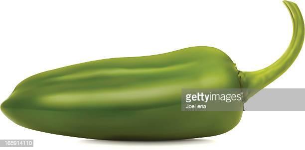 jalapeno pepper - jalapeno pepper stock illustrations