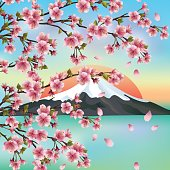 Japanese background with Japanese cherry tree sakura