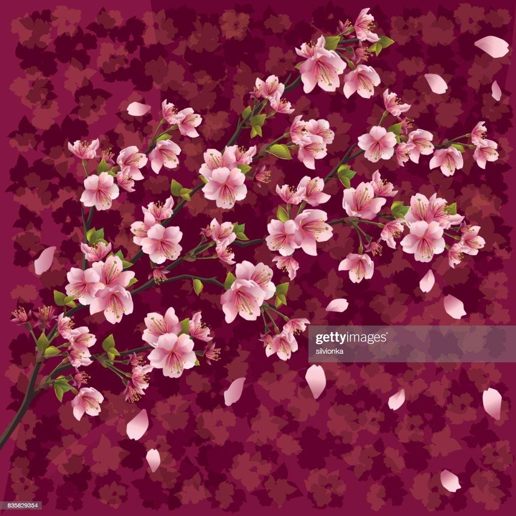 Japanese background with sakura blossom