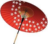 Japanese umbrella, maple