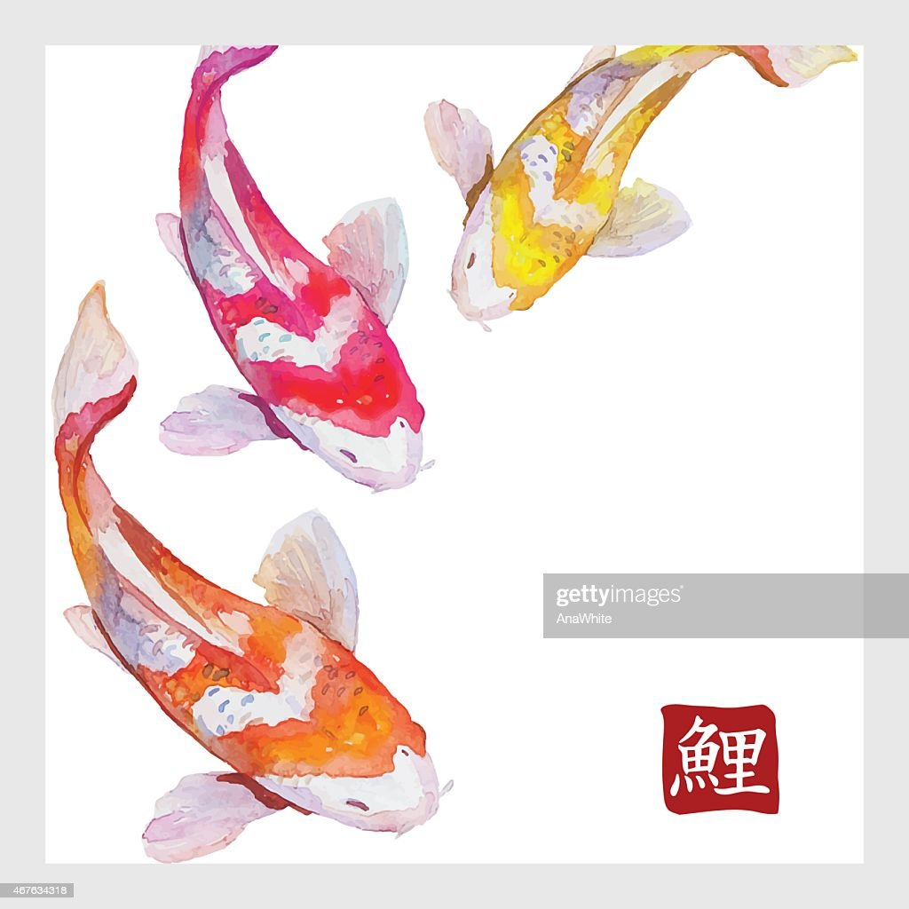Japanese watercolor carps koi swimming. Calligraphic simbol