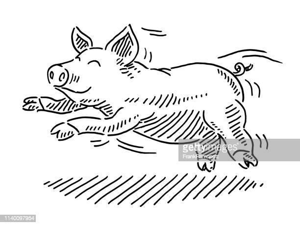 joyful cartoon pig drawing - pig stock illustrations