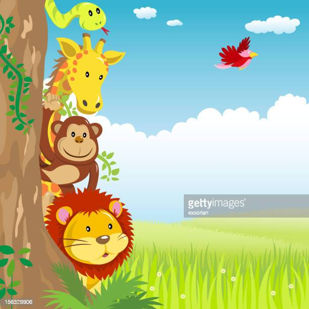 jungle animal hiding behide the tree in spring - wildcat animal stock illustrations, clip art, cartoons, & icons