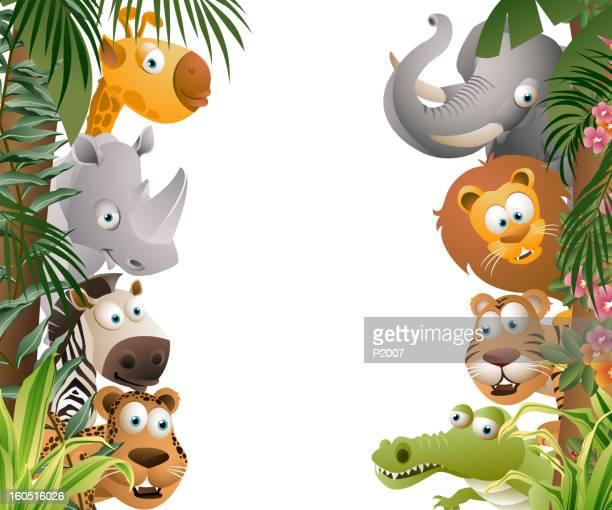jungle animals - safari animals stock illustrations