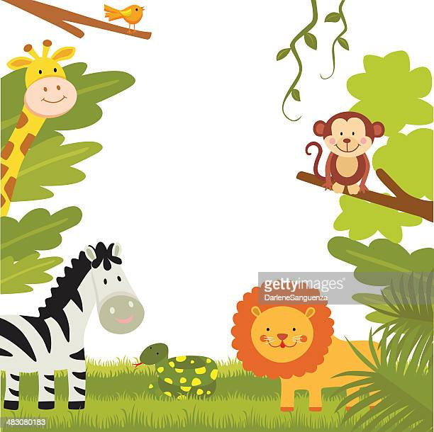 jungle animals - animal stock illustrations