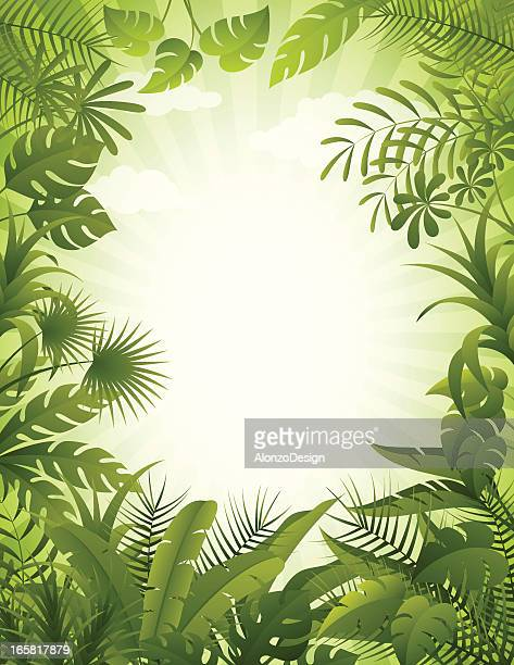 Jungle background