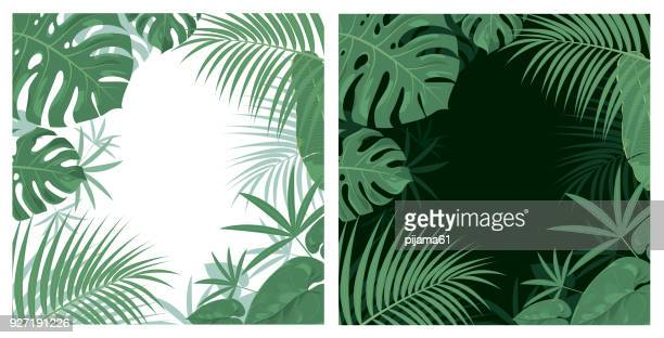 stockillustraties, clipart, cartoons en iconen met jungle achtergrond - tropisch klimaat