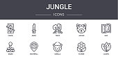 jungle concept line icons set contains