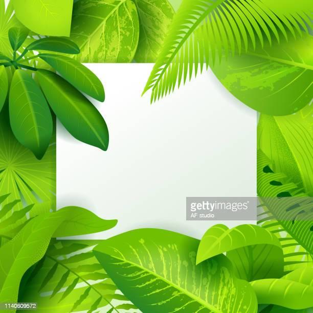 Jungle green background