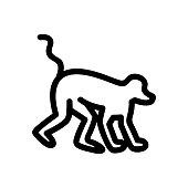 Jungle Monkey Icon Vector. Isolated contour symbol illustration