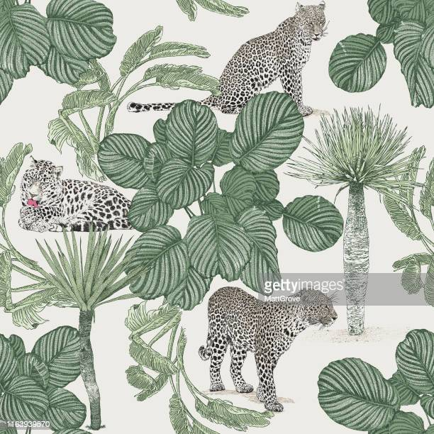 jungle seamless repeat pattern. leopard, jaguar, palms. - leopard stock illustrations