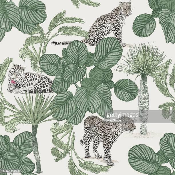 illustrazioni stock, clip art, cartoni animati e icone di tendenza di modello di ripetizione senza soluzione di continuità jungle. leopardo, giaguaro, palme. - leopardo