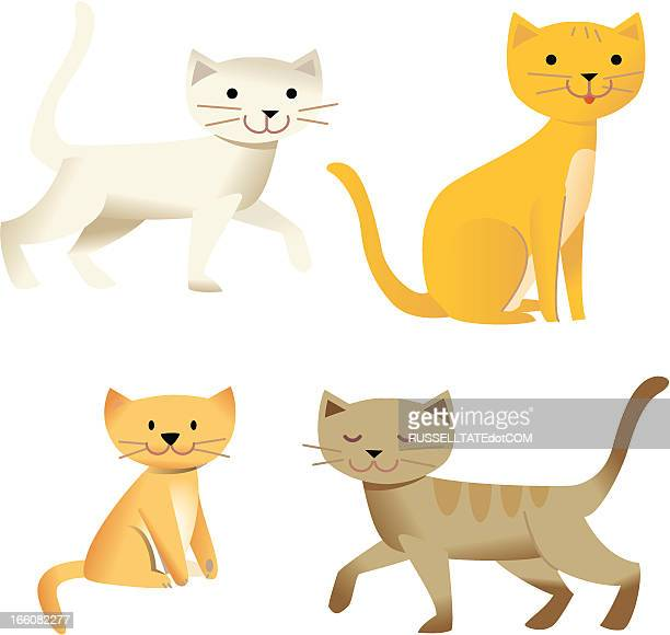 just for cats - undomesticated cat stock illustrations