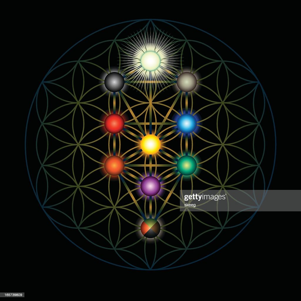 Kabbalah Tree Of Life High Res Vector Graphic Getty Images The tree of life is a relational matrix of ten divine emanations through which god creates, sustains, and directs all worlds. https www gettyimages com detail illustration kabbalah tree of life royalty free illustration 165739809