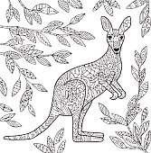 Kangaroo illustration.