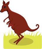 kangaroo mother and her young
