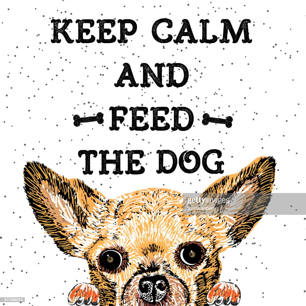 Keep calm and feed the dog. Sign with cute smiling but starving dog. Motivational lettering for dog adoption. Inscription for dog lovers. Inspirational typographic calligraphy. Phrase for dog shelter.