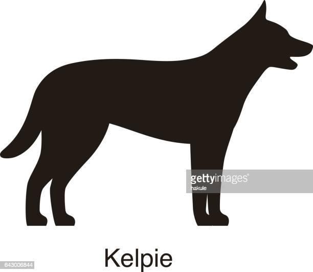 ケルピー犬シルエット、側面図、ベクトル - オーストラリアンケルピー点のイラスト素材/クリップアート素材/マンガ素材/アイコン素材