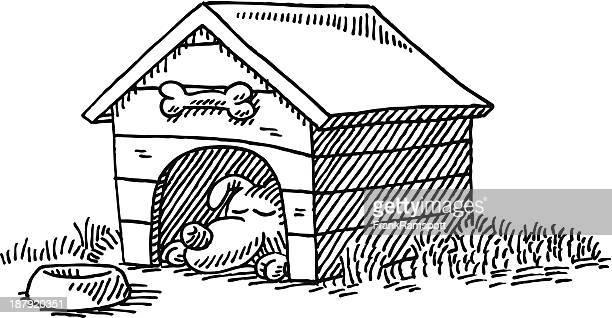 Kennel Sleeping Dog Cartoon Drawing