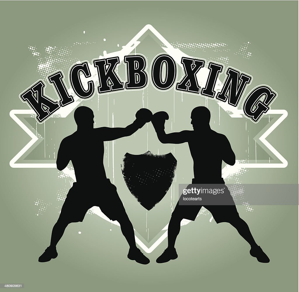 kickboxing shield