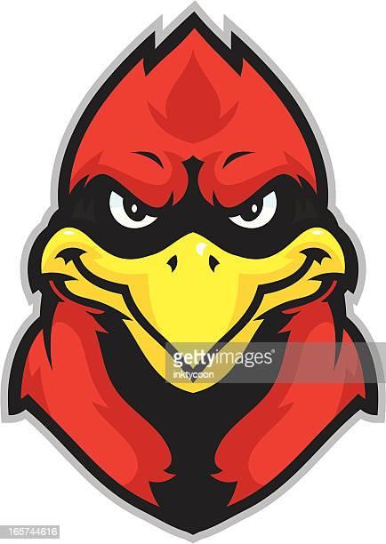 kid cardinal mascot head - cardinal bird stock illustrations, clip art, cartoons, & icons