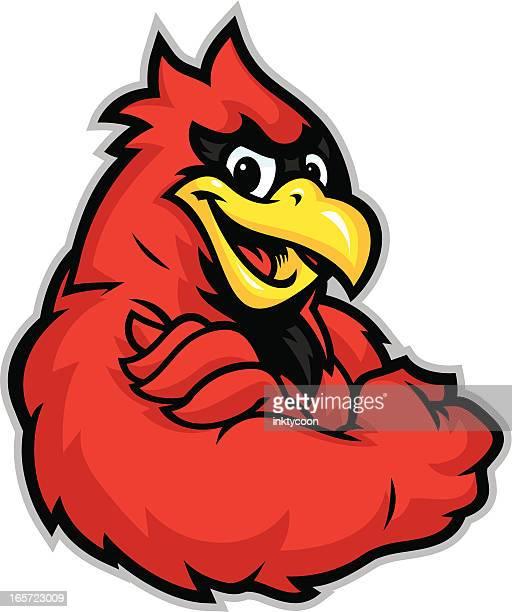 kid cardinal mascot - cardinal bird stock illustrations, clip art, cartoons, & icons