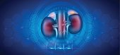 Kidney health care abstract blue background