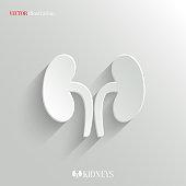Kidneys icon - vector white app button