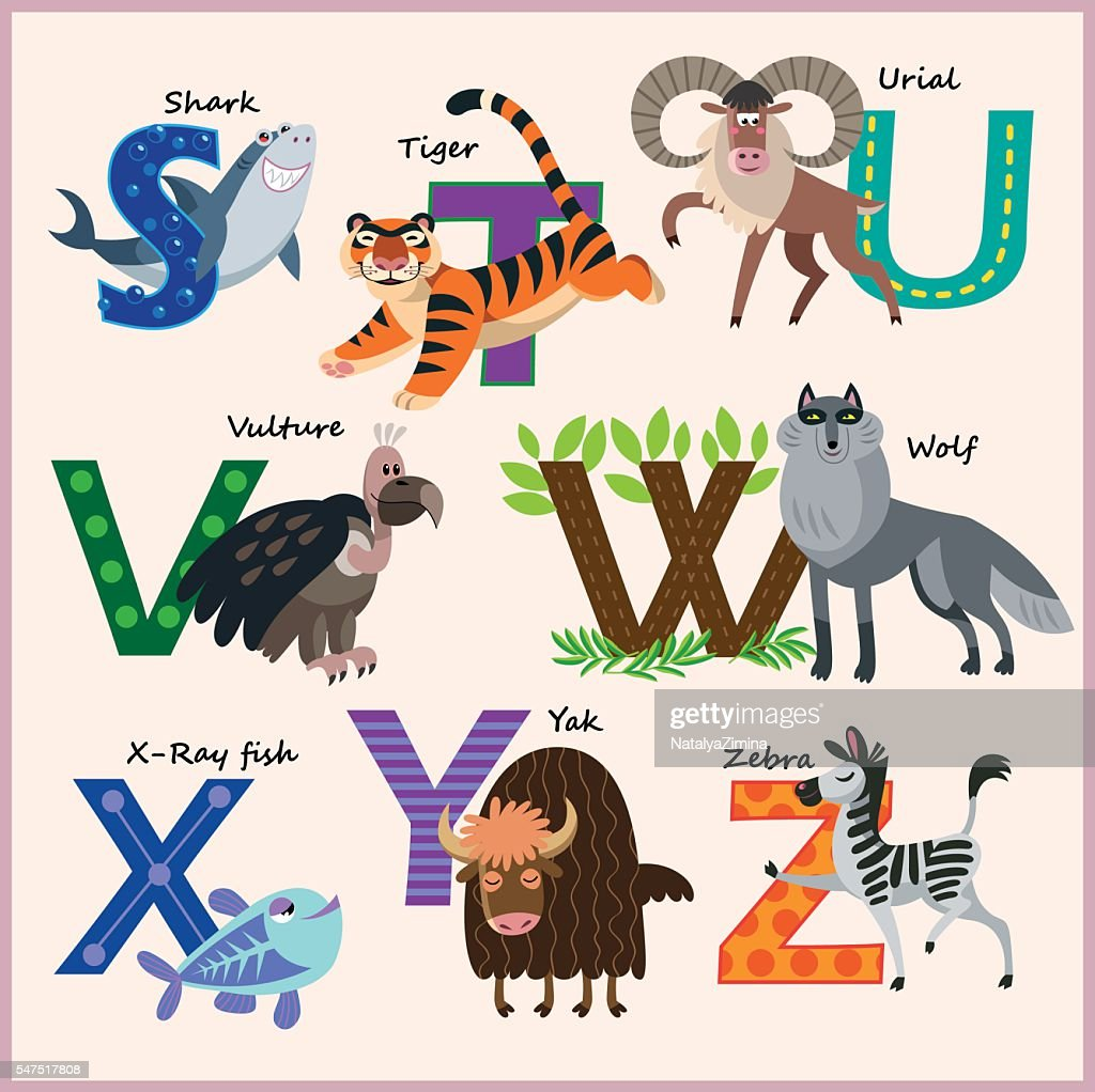 Kids vector Zoo alphabet with animals in cartoon style