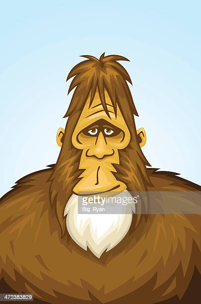 kind bigfoot - bigfoot stock illustrations