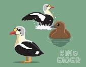 King Eider Cartoon Vector Illustration