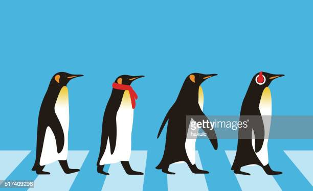king penguin walking, penguin seed series - flightless bird stock illustrations