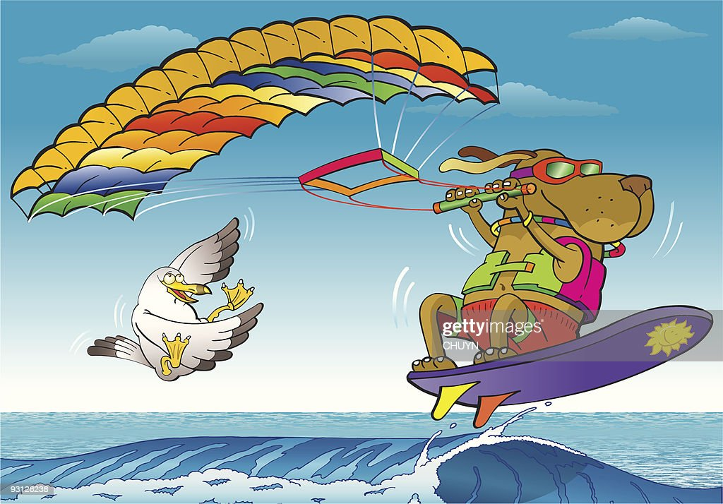 Kite Surfing Dog