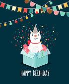 Kitten in present box birthday card
