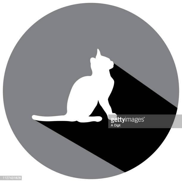 illustrations, cliparts, dessins animés et icônes de kitty cat sit shadow icône - chat profil