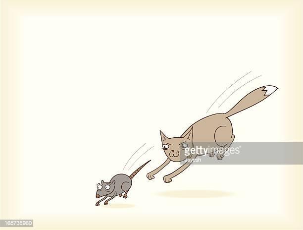 Kitty verfolgen Mousey