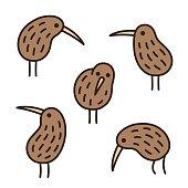 kiwi birds doodle set