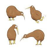 Kiwi birds set.