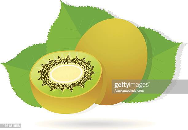 kiwifruit with leafs.
