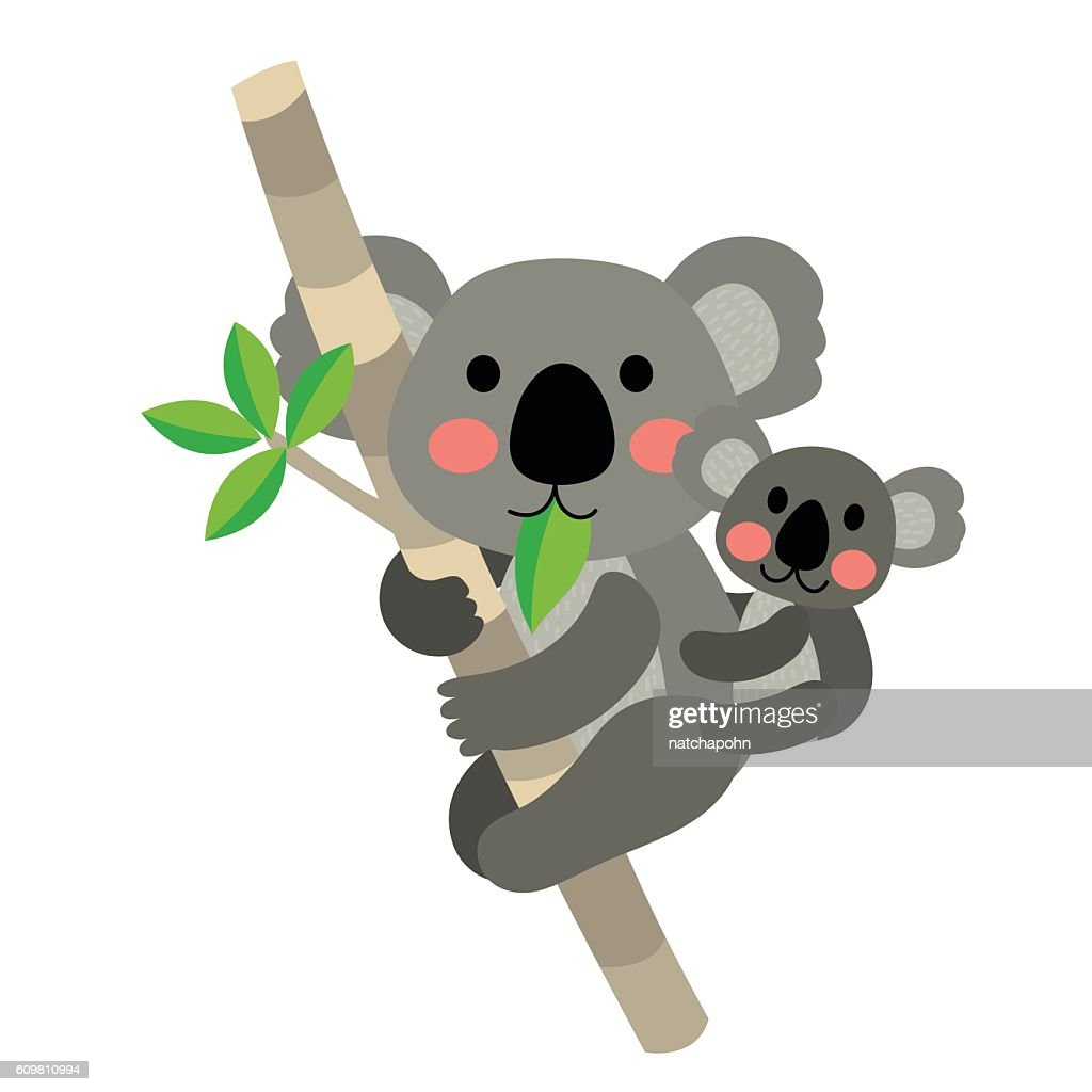 Koala bear and baby koala animal cartoon character vector illustration.