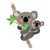 Koala bear and baby koala animal cartoon character vector illustration.
