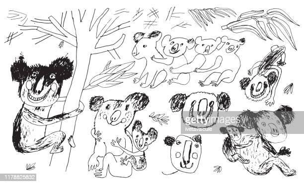 illustrations, cliparts, dessins animés et icônes de ours de koala - koala