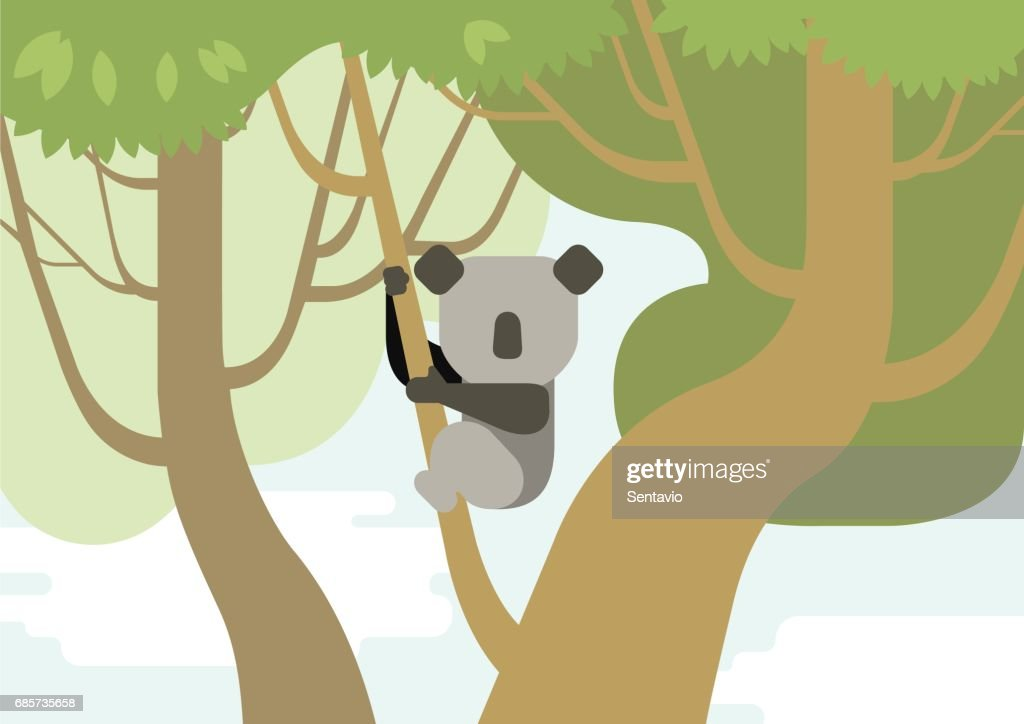 Koala on tree branch flat design cartoon vector wild animals in the forest. Flat zoo children collection.