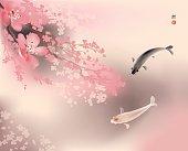 Koi and spring sacura